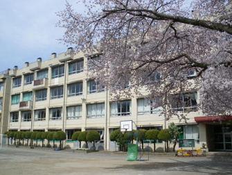 川越市立西小学校(周辺)