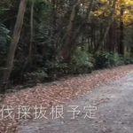土地 狭山市堀兼 市街化調整区域 2,650万円【動画あり】