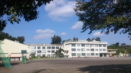 水富小学校(周辺)