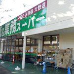 業務スーパー東所沢店 徒歩12分(周辺)